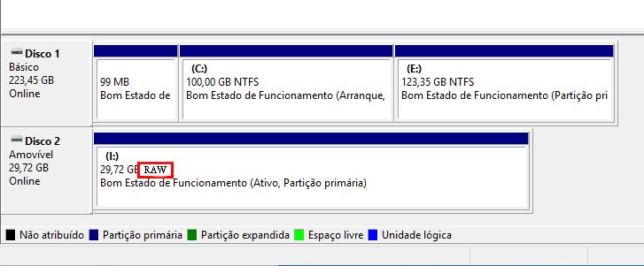 exibir o sistema de arquivo RAW