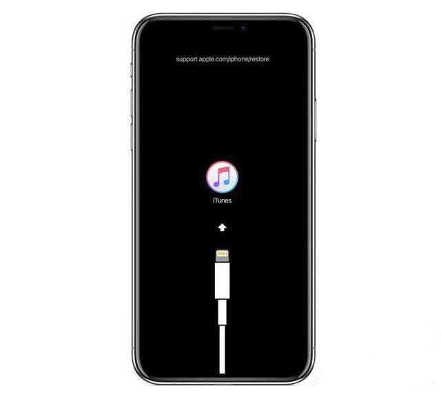 os ícones do iTunes e do cabo de dados são exibidos