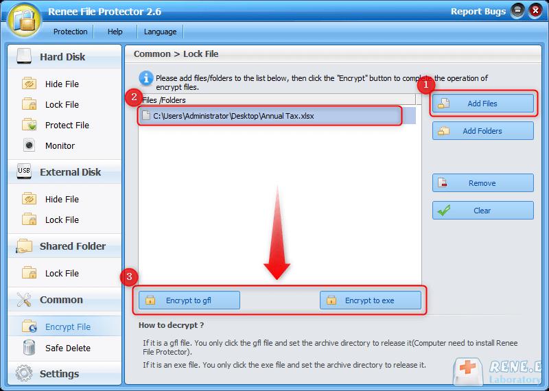 criptografar o arquivo com Renee File Protector